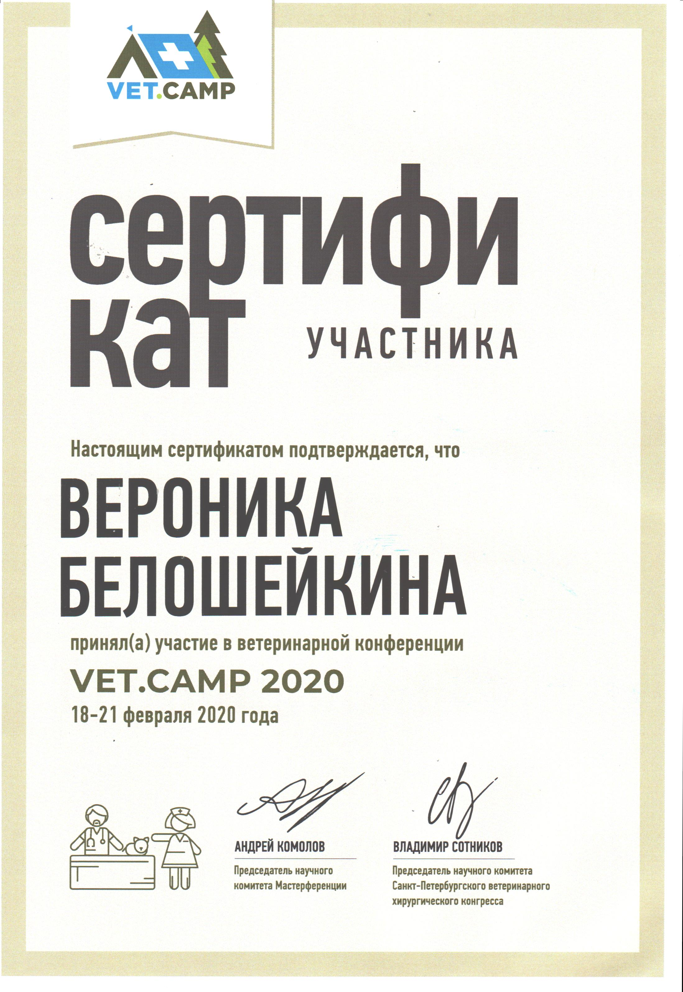 Vetcamp 2020 Сертификат. Вероника Белошейкина
