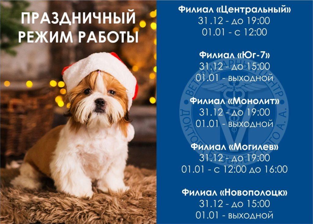 ветеринарная клиника новогодний режим работы