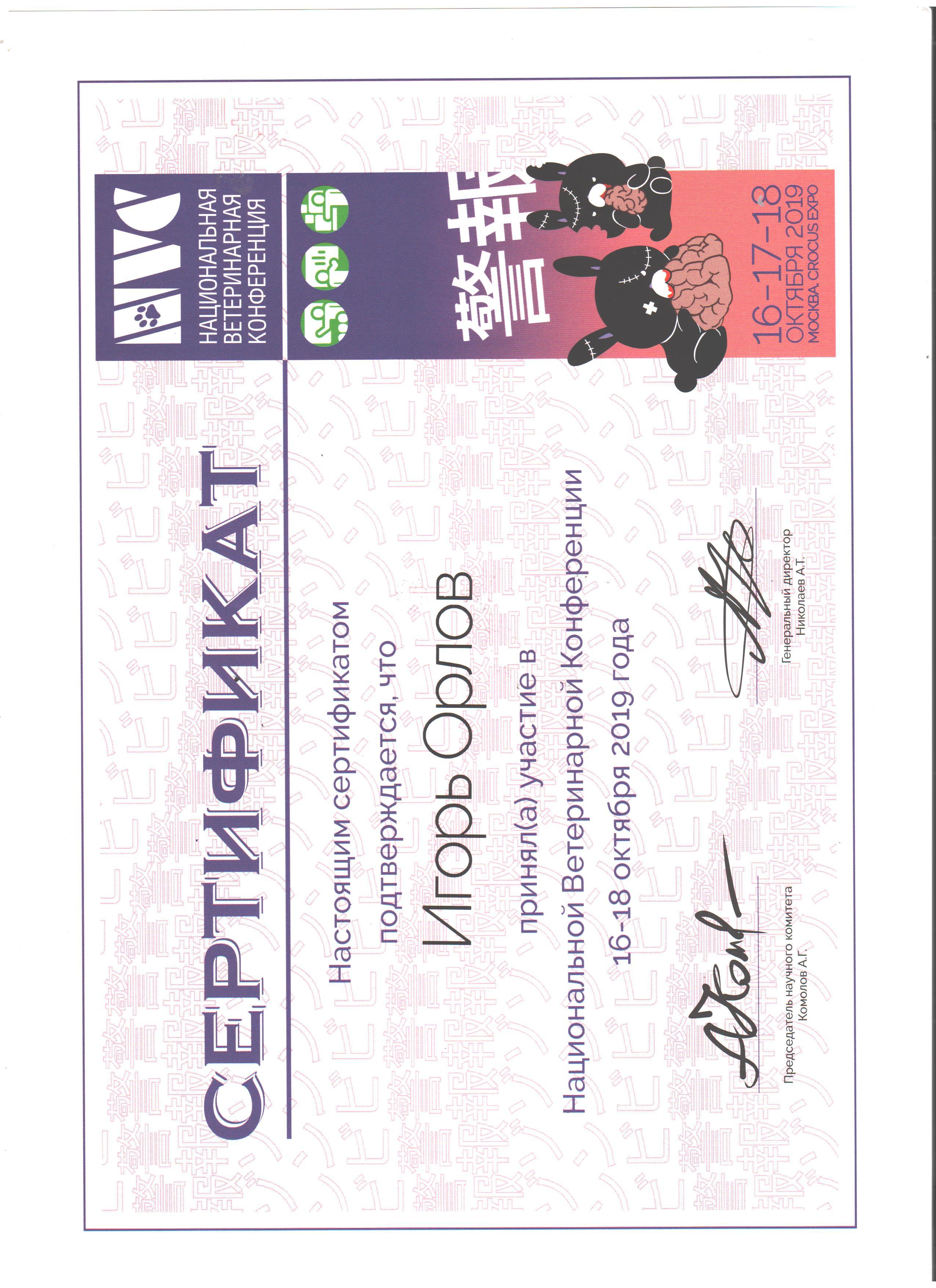 Vetcamp 2020 Сертификат. Орлов Игорь