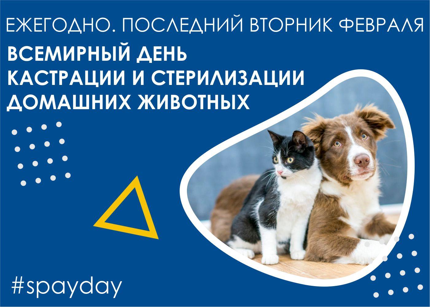 Всемирный день стерилизации и кастрации