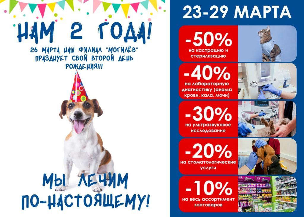 скидки на ветеринарные услуги в Могилеве к 2-х летию ветклиники
