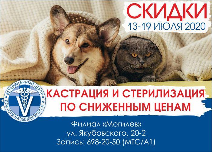 Цены по акции на кастрацию и стерилизацию в филиале «Могилев»