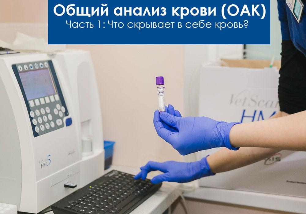 Общий анализ крови. Что это