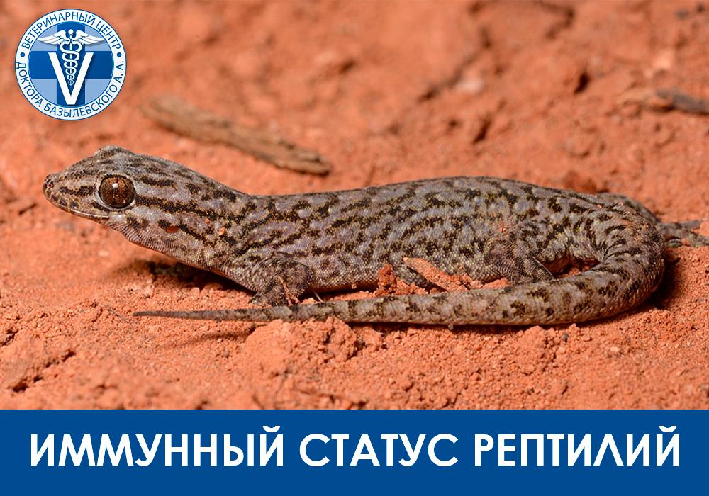 Иммунный стафтус рептилий