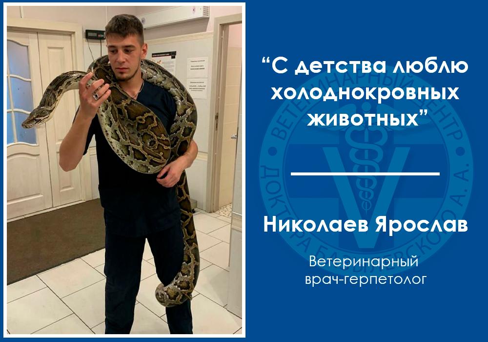 Интервью с ветеринарным герпетологом Николаевым Ярославом