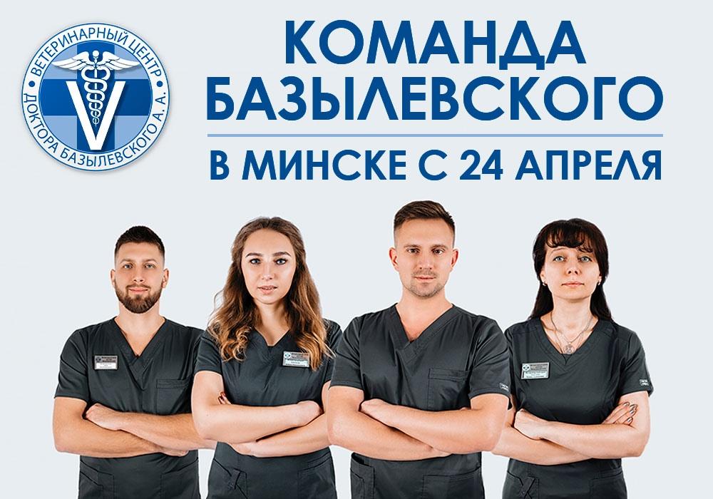 С 24 апреля в Минске ведущие врачи Ветеринарного центра